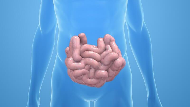 Die Entstehung einer Hämochromatose und wie man sie erkennen und behandeln kann