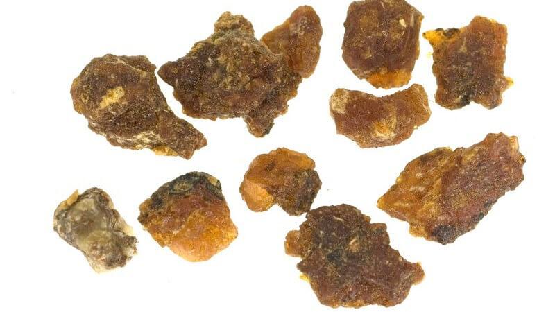 Merkmale, Inhaltsstoffe und Verwendung des Myrrhenbaums als Heilmittel sowie in der Kosmetik