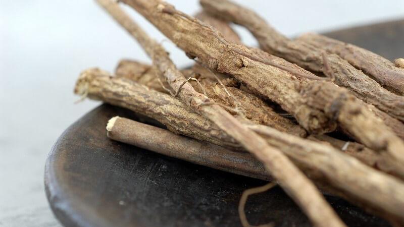 Merkmale und Verwendung von Süßholz als Heilmittel oder Lakritz und bei welchen Beschwerden und Erkrankungen es hilft