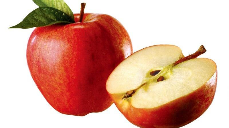 Bei unsachgemäßer Lagerung verlieren viele Obstsorten wichtige Vitalstoffe und schmecken nicht mehr