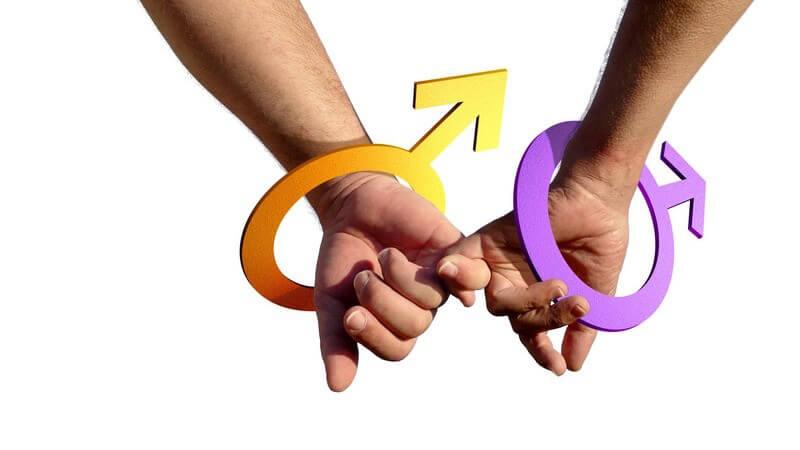 Homo-Ehe: Rechtliche Grundlagen der Schwulen-Ehe und Lesben-Ehe