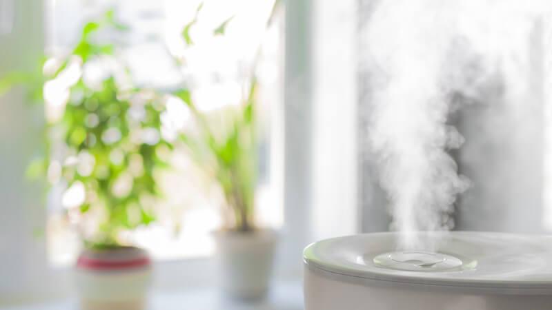 Wissenswertes zum Luftbefeuchter mit Verdampfung