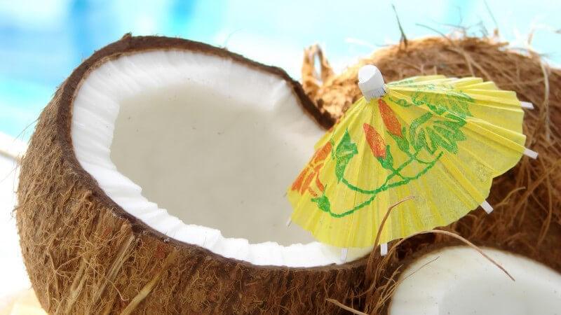 """Zutaten und Zubereitung der Drinks """"Kokosnuss-Romanze"""", """"Schöne Maria"""" und """"Prairie Oyster"""""""