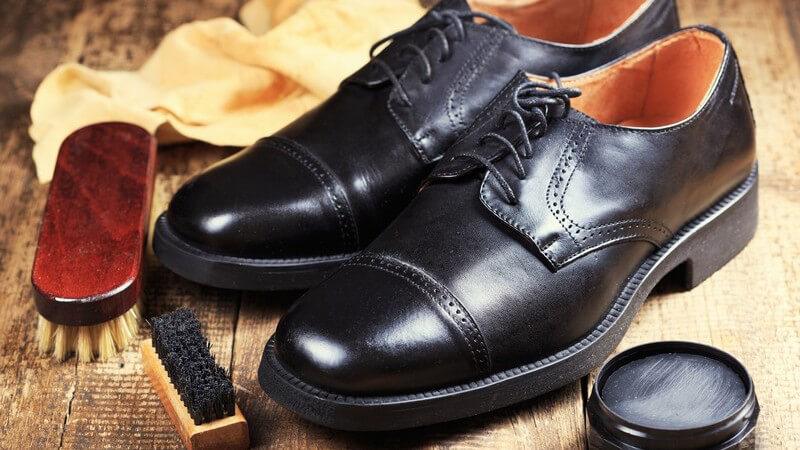 Für die Schuhreinigung, gibt es zahlreiche verschiedene Schuhbürsten, die jeweils andere Einsatzgebiete haben
