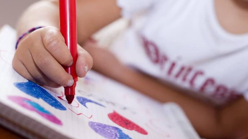 Schreibwaren, Hefte und Co - Dinge, die der Schüler für die Schule benötigt
