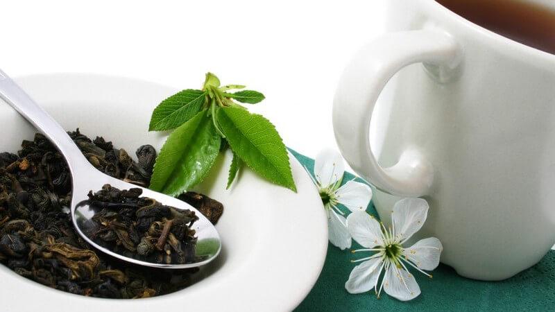 Die Gesundheitseffekte von Tee