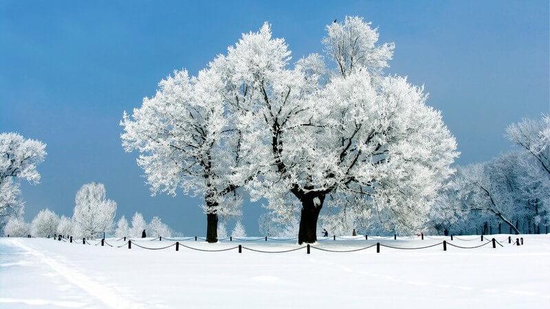 Wissenswertes zum Winterwandern