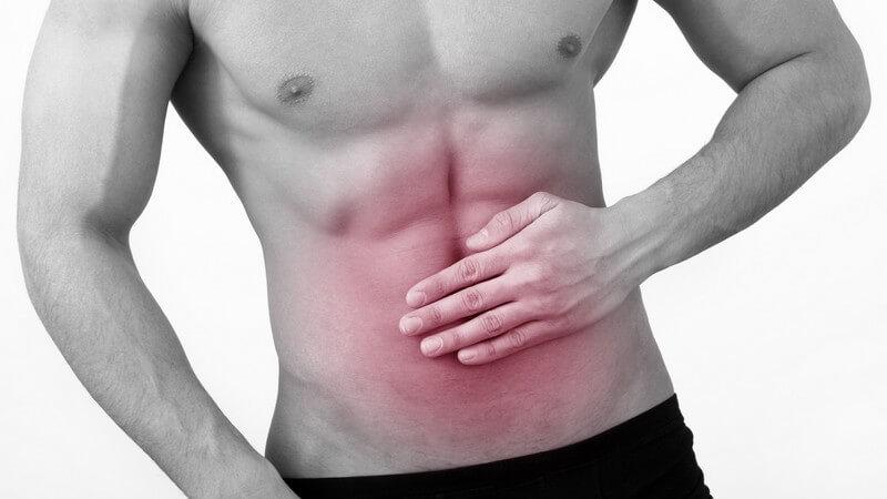 Das Abdomen wird in Ober-, Mitel- und Unterbauch unterteilt; zu den Bauchmuskeln zählen die gerade, die seitliche sowie die schräge Bauchmuskulatur