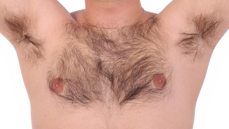 Die höchste Ausprägung der Brusthaare wird in der sechsten Lebensdekade erreicht
