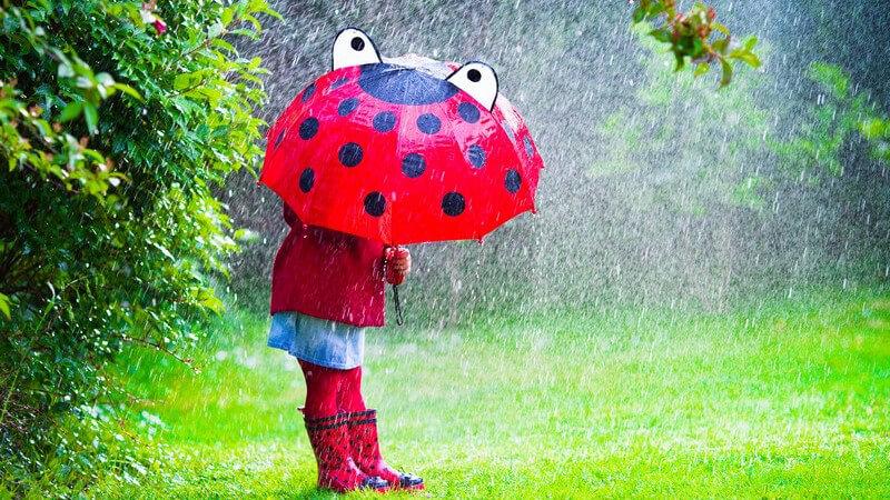 Tipps und Infos rund um den Regenschirm