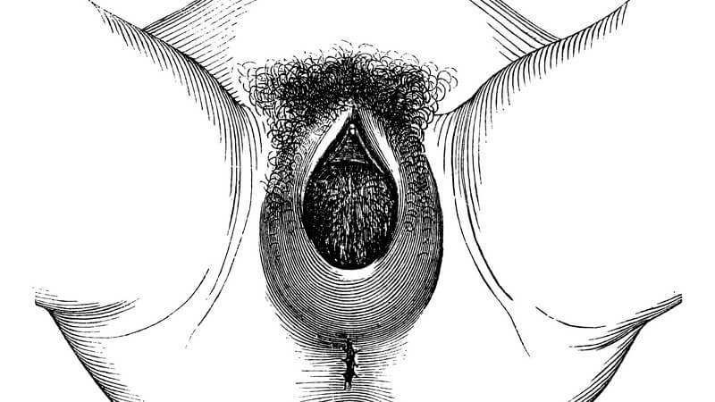 Die Erektion eines Mannes lässt sich durch Druckausübung auf das Perineum verstärken