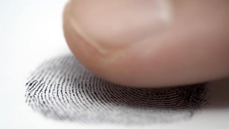 Gesunde Menschen haben an jeder Hand fünf Finger: den Daumen, den Zeigefinger, den Mittelfinger, den Ringfinger sowie den kleinen Finger