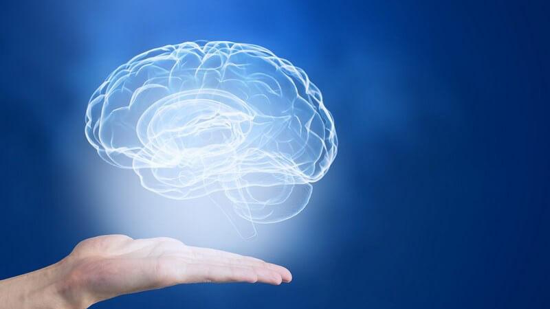 Man unterscheidet mehrere Gedächtnisformen - das sensorische Gedächtnis, das Kurzzeitgedächtnis, das Arbeitsgedächtnis sowie das Langzeitgedächtnis