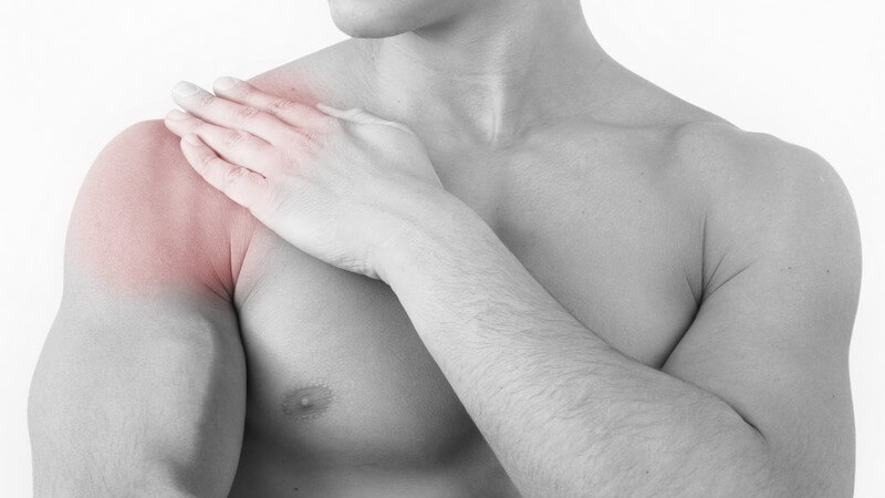 Der Schultergürtel ermöglicht mit seinen Bestandteilen viele zahlreiche Bewegungen der Arme