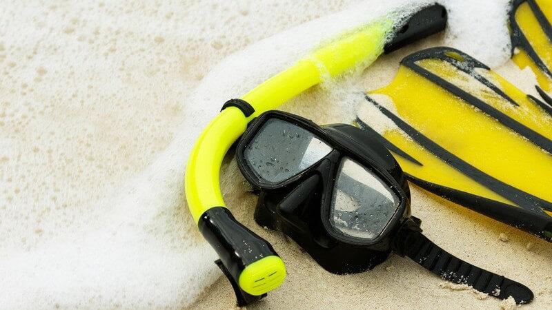 Flossen können dazu genutzt werden, sich im Wasser zu stabilisieren, fortzubewegen oder zu tauchen