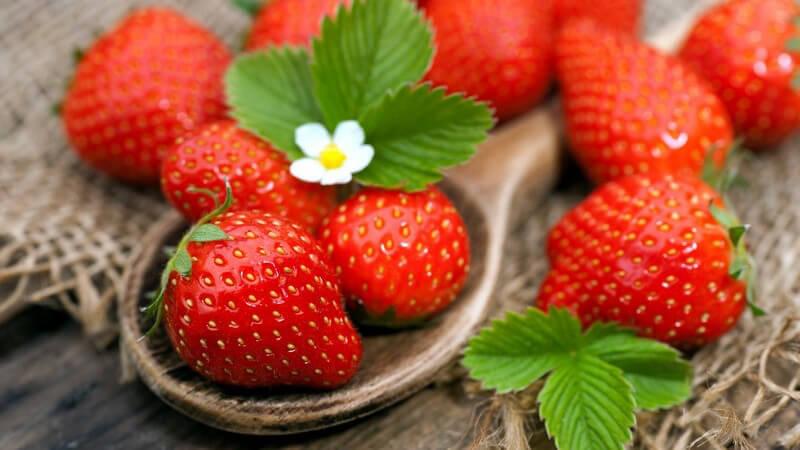 Man kann Erdbeeren pur genießen oder in vielen Drinks und Desserts verarbeiten