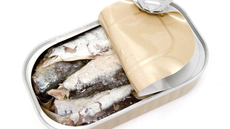 Zu den beliebtesten Sorten zählen mitunter Thunfisch, Heringe und Sardinen