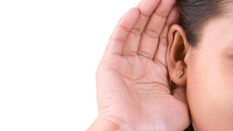 Der Schall wird durch das Hörorgan wahrgenommen - der Hörweg verläuft vom Außenohr über das Mittelohr bis zum Innenohr