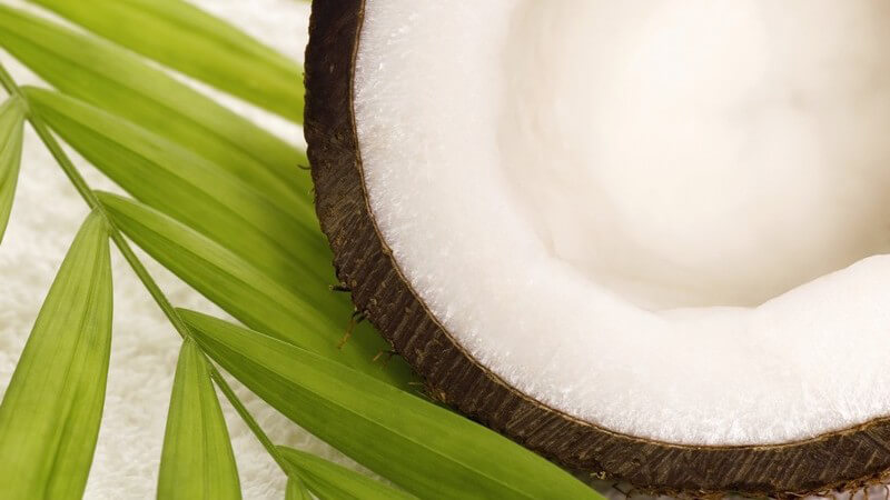 Tipps zur Verwendung der Kokosnuss