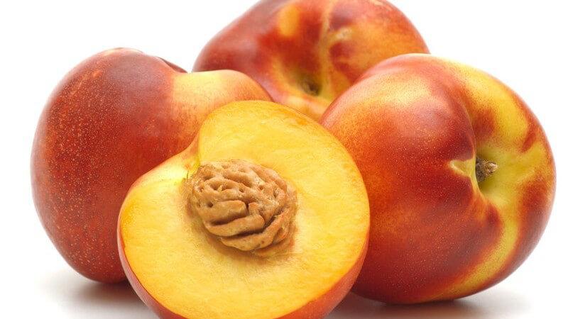 Saftig, süß und sehr gesund - Nektarinen sind kalorienarm und schmecken als vitaminreicher Snack oder in einem Chutney