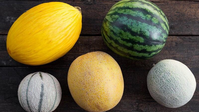 Gesundheitliche Vorzüge und Sortenvielfalt der Melonen
