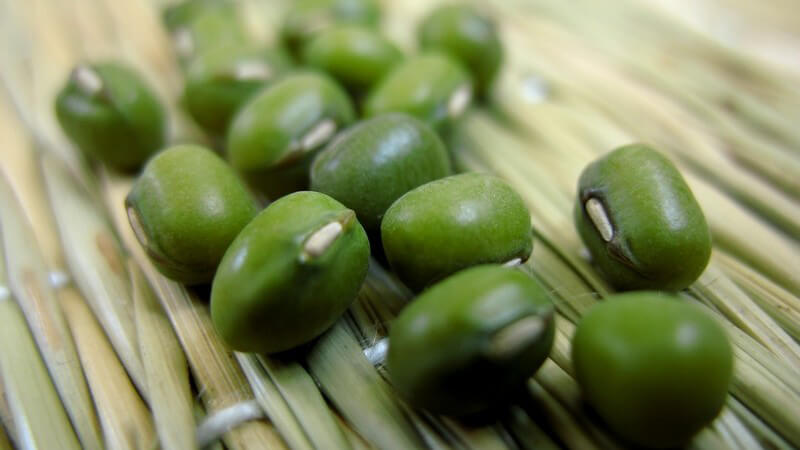 Mungbohnen können sowohl roh, als auch gebraten oder blanchiert verzehrt werden