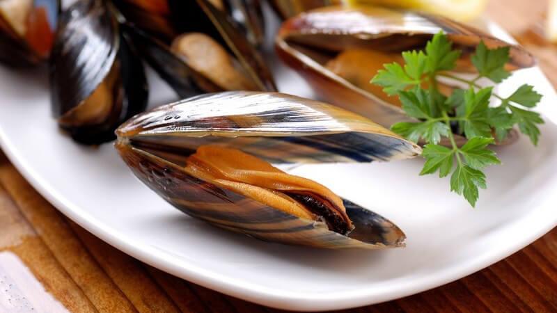 Tipps zur Zubereitung von Muscheln