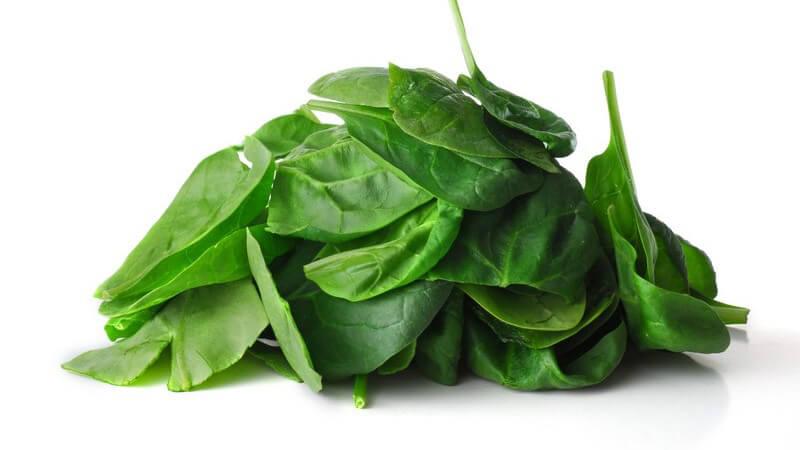 Wissenswertes zu Spinat