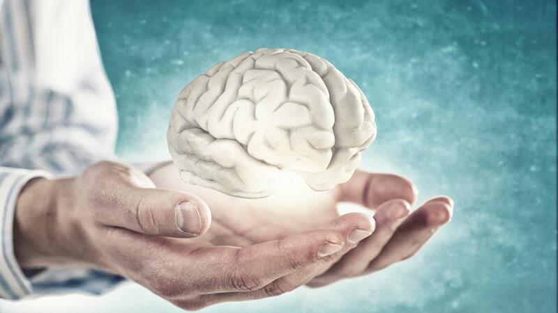 Definition und Interpretation von Intelligenz